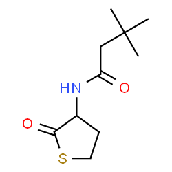 ChemSpider 2D Image | 3,3-Dimethyl-N-(2-oxotetrahydro-3-thiophenyl)butanamide | C10H17NO2S