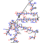ChemSpider 2D Image | (1R,4S,7S,10S,13S,16S,19S,22S,25S,28R,33R,36S,39S,42S,45S,48S,51S,54S,57S,60S,63S,69R,74R,77S,80S,90R)-69-[[(2S)-2-[[(2S)-6-amino-2-[[(2S,3S)-2-[[(2S)-2-[[(2S)-2-[[(2S)-2-[[(2S)-2-[[(2S)-2-[[(2S)-2-[[(2S)-2-amino-3-carboxy-propanoyl]amino]-3-hydroxy-propanoyl]amino]-3-(1H-indol-3-yl)propanoyl]amino]-4-methylsulfanyl-butanoyl]amino]-4-carboxy-butanoyl]amino]-4-carboxy-butanoyl]amino]-3-methyl-butanoyl]amino]-3-methyl-pentanoyl]amino]hexanoyl]amino]-4-methyl-pentanoyl]amino]-90-[[(2S)-6-amino-2-[[(2S)-4-amino-2-[[(2S)-2-[[(2S)-2-[[(2S)-2-[[(2S)-3-hydroxy-2-[[(2S)-3-(4-hydroxyphenyl)-2-[[(2S)-4-methyl-2-[[(2S)-5-oxopyrrolidine-2-carbonyl]amino]pentanoyl]amino]propanoyl]amino]propanoyl]amino]propanoyl]amino]-4-methyl-pentanoyl]amino]propanoyl]amino]-4-oxo-butanoyl]amino]hexanoyl]amino]-7-(4-aminobutyl)-45-(3-amino-3-oxo-propyl)-25-benzyl-60-(2-carboxyethyl)-33-[[2-[[(1S)-1-[[(1S)-2-[[(1S,2R)-1-[[(1S)-2-[[(1S)-1-carboxy-2-hydroxy-ethyl]amino]-1-(1H-indol-3-ylmethyl)-2-oxo-ethyl]carbamoyl]-2-hydroxy-propyl]amino]-1-(hydroxymethyl)-2-oxo-ethyl]carbamoyl]-3-methylsulfanyl-propyl]amino]-2-oxo-ethyl]carbamoyl]-10,22,51,63-tetrakis(3-guanidinopropyl)-4-[(1R)-1-hydroxyethyl]-13-(hydroxymethyl)-77-(1H-imidazol-5-ylmethyl)-16,57-diisobutyl-54,80-diisopropyl-19,39,48-trimethyl-36,42-bis[(1S)-1-methylpropyl]-2,5,8,11,14,17,20,23,26,35,38,41,44,47,50,53,56,59,62,65,68,75,78,81,84,91-hexacosaoxo-30,31,71,72,87,88-hexathia-3,6,9,12,15,18,21,24,27,34,37,40,43,46,49,52,55,58,61,64,67,76,79,82,85,92-hexacosazabicyclo[72.11.7]dononacontane-28-carboxylic acid | C256H408N74O74S8