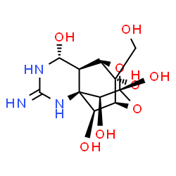 what type of chemical bonds are found in tetrodotoxin